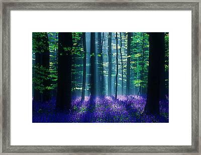 Avatar Framed Print by Martin Podt