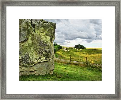Avebury Standing Stone And Sheep Framed Print