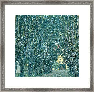 Avenue In The Park Of Schloss Kammer Framed Print