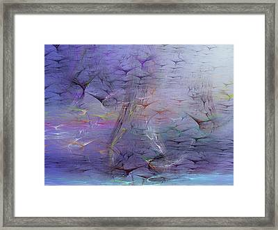 Avian Dreams 3 Framed Print
