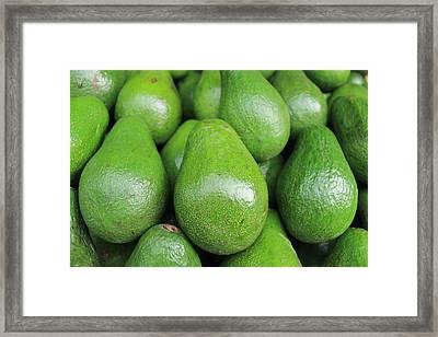 Avocado Framed Print by Happy Home Artistry