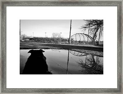 Framed Print featuring the photograph Awaiting Opening Day by Jeanette O'Toole