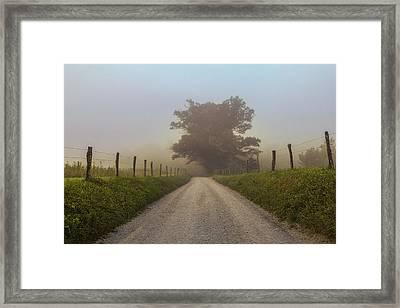 Awaiting The Horizon Framed Print by Jessica Brawley