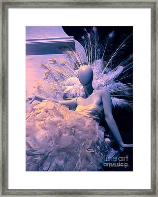 Awaiting The Next Party Framed Print