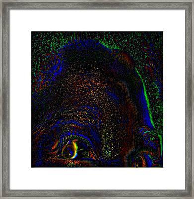 Awake In A Dream Framed Print by Fania Simon