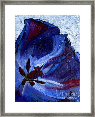 Awakening Framed Print by Allison Coelho Picone