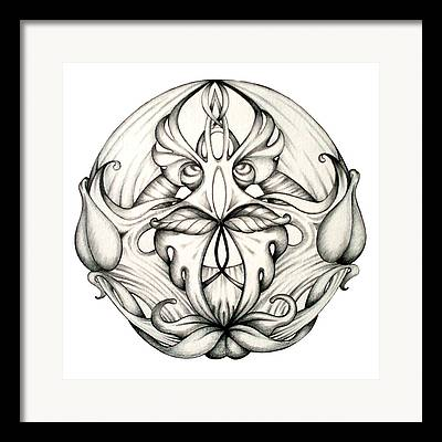 Organic Drawings Framed Prints