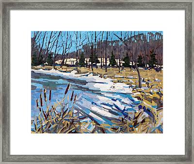Awakening Wetland Framed Print