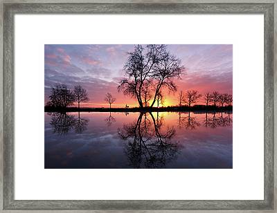 Awakenings Framed Print by Roeselien Raimond