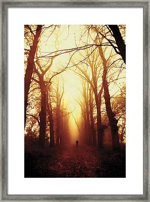 Away Framed Print by Art of Invi