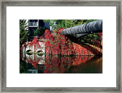 Away To The Red Framed Print by Jez C Self