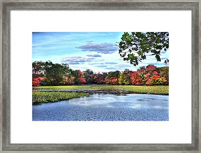 Awesome Autumn Framed Print by Mikki Cucuzzo