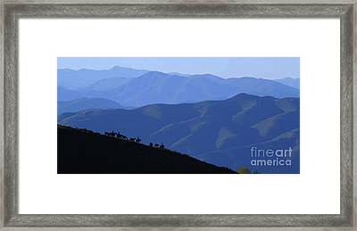 Awesome North American Mountains Photography See On Posters Pillows Curtains Duvet Covers Phone Case Framed Print by Navin Joshi