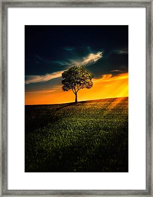 Awesome Solitude II Framed Print