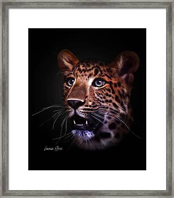 Awestruck Framed Print by Lauren Goia