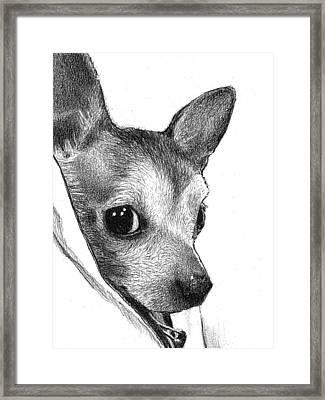 Switchback Binky Framed Print by Lorraine Zaloom