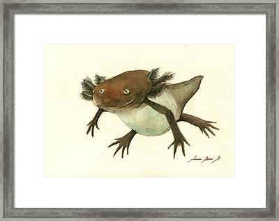 Axolotl Framed Print