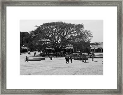 Axum Town Square, Ethiopia Framed Print by Aidan Moran