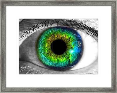 Aye Eye Framed Print