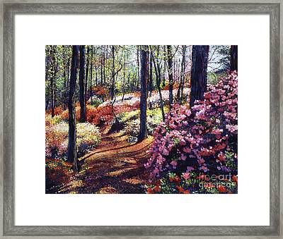 Azalea Forest Framed Print by David Lloyd Glover