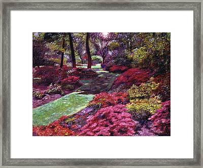 Azalea Park Framed Print by David Lloyd Glover