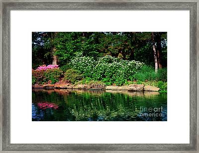 Azalea Reflection At Honor Heights Park Framed Print by Tamyra Ayles