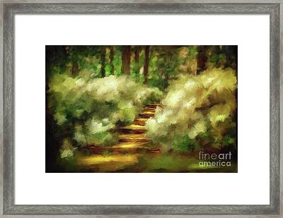 Azalea Stairs Framed Print by Lois Bryan