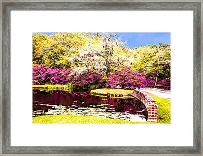 Azaleas And Dogwood Framed Print by Terry Shoemaker