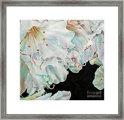 Azaleas-in-italy Framed Print by Nancy Newman