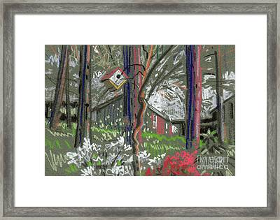 Azaleas In Spring Framed Print by Donald Maier