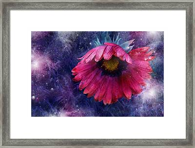 Framed Print featuring the photograph Azure Claret by Kathleen Stephens