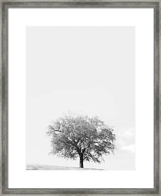 Azygous Framed Print