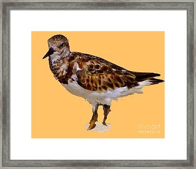 Framed Print featuring the digital art B Bird by Francesca Mackenney