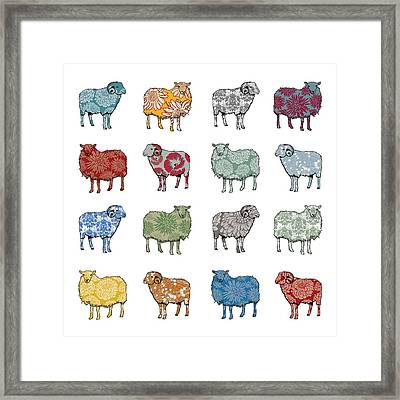 Baa Humbug Framed Print by Sarah Hough