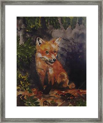 Babe In The Woods Framed Print by Jean Blackmer