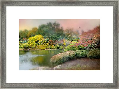 Baby Baby Framed Print by Diana Angstadt