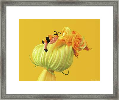 Baby Bee Framed Print