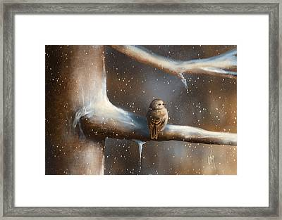 Baby Bird  Framed Print by Veronica Minozzi