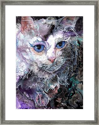Framed Print featuring the painting Baby Blues by Sherry Shipley