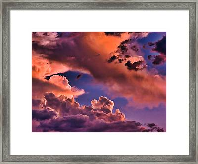Baby Dragon's Fledgling Flight Framed Print
