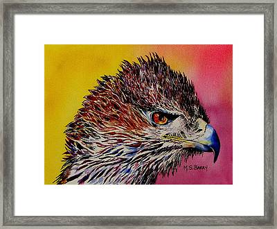 Baby Eagle Framed Print by Maria Barry