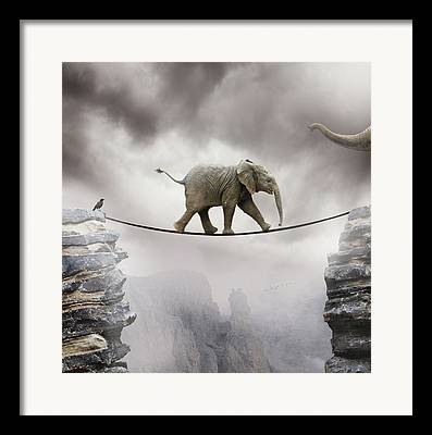Elephant Rocks Framed Prints