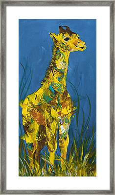 Baby Giraffe  Framed Print by Catherine Jeltes