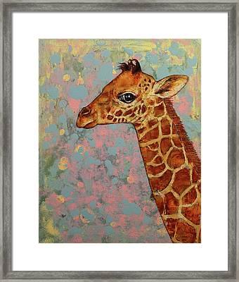 Baby Giraffe Framed Print