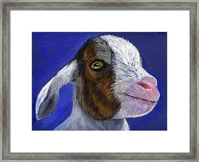Baby Goat Framed Print by Angela Finney