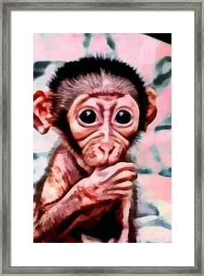 Baby Monkey Realistic Framed Print