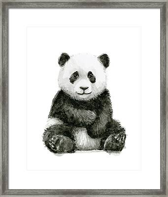 Baby Panda Watercolor Framed Print by Olga Shvartsur