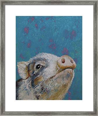 Baby Pig Framed Print by Michael Creese