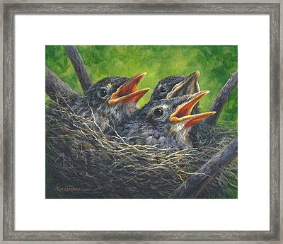 Baby Robins Framed Print by Kim Lockman