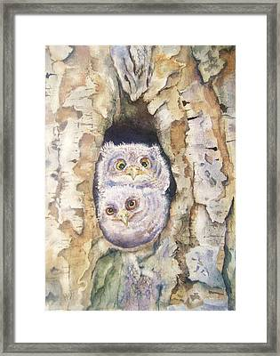 Baby Screech Owls Framed Print by Patricia Pushaw